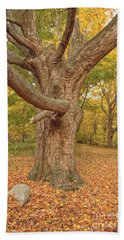 Odiorne Point State Park - Rye New Hampshire Hand Towel