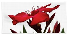 Hand Towel featuring the photograph Oleander Blood-red Velvet 3 by Wilhelm Hufnagl
