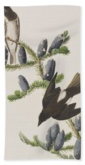 Olive Sided Flycatcher Hand Towel by John James Audubon