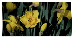 Camelot Daffodils Hand Towel