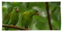 Orange -chinned Parakeets  Bath Towel
