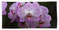 Orchids Hand Towel