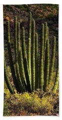 Bath Towel featuring the photograph Organ Pipe Cactus  by Saija Lehtonen