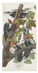 Woodpecker Hand Towels