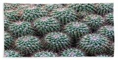Pincushion Cactus Hand Towel