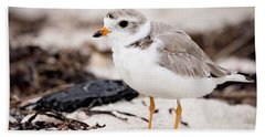 Piping Plover Hand Towel
