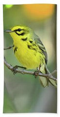 Prairie Warbler Bath Towel by Alan Lenk