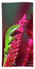 Pretty In Pink Bath Towel by Kathy Baccari