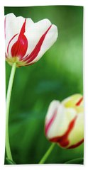 Red And White Tulips Bath Towel