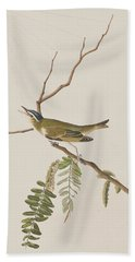 Red Eyed Vireo Hand Towel by John James Audubon
