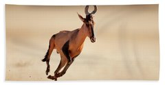 Red Hartebeest Running Hand Towel