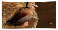 Bath Towel featuring the photograph Ringed Teal On A Rock by Chris Flees