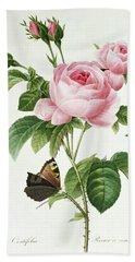 Rosa Centifolia Hand Towel by Pierre Joseph Redoute