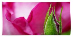 Bath Towel featuring the photograph Budding Rose by Rona Black
