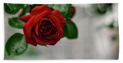 Roses In The City Park Hand Towel