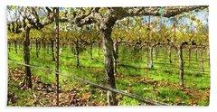 Rows Of Grapevines In Napa Valley Caliofnia Bath Towel