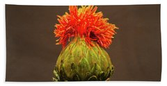 Safflower Floral Macro Hand Towel