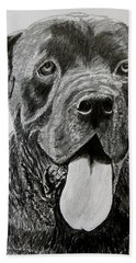 Sampson Hand Towel by Stan Hamilton