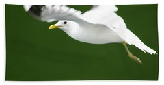 Seagull At The Fjord Hand Towel by KG Thienemann