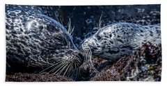 Seal Pup With Mom Hand Towel