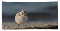 Snowy Plover Hand Towel by Meg Rousher