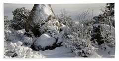 Hand Towel featuring the photograph Snow Seal Rock by Deborah Moen