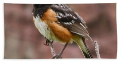 Spotted Towhee Hand Towel