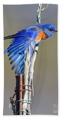 Spread The Wings Hand Towel by Mike Dawson