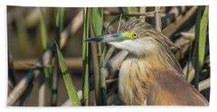Squacco Heron - Ardeola Ralloides Bath Towel by Jivko Nakev