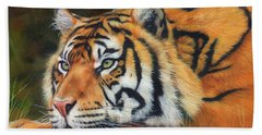 Sumatran Tiger  Bath Towel