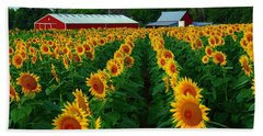 Sunflower Field #4 Hand Towel