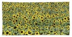 Sunflowers Mattituck New York Hand Towel