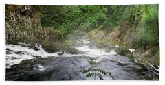 Swallow Falls Bath Towel by Roger Lighterness