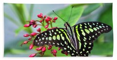 Hand Towel featuring the photograph Tailed Green Jay Butterfly  by Saija Lehtonen