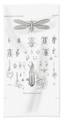 Bath Towel featuring the drawing Termites, Macrotermes Bellicosus by H Hagen