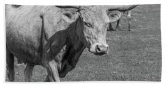 Texas Longhorns Hand Towel