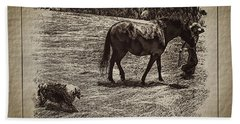 The New Mare And The Perfect Summer Day Hand Towel