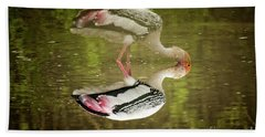 The Painted Stork  Mycteria Leucocephala  Bath Towel