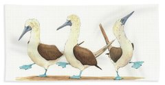 Three Blue Footed Boobies Hand Towel by Juan Bosco