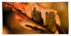 Hand Towel featuring the photograph Tri-color Beech In Autumn by Angela Rath