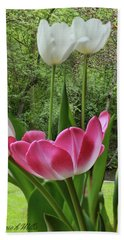 Hand Towel featuring the photograph Tulips by Bonnie Willis