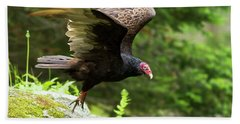Bath Towel featuring the photograph Turkey Vulture by Mircea Costina Photography