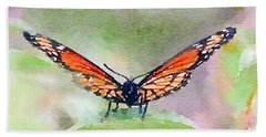 Viceroy Butterfly  Hand Towel