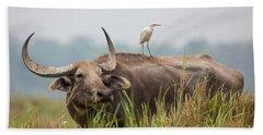 Water Buffalo, India Hand Towel