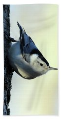 White Breasted Nuthatch Wading River New York Bath Towel