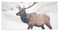 Hand Towel featuring the photograph Winter Bull by Mike Dawson