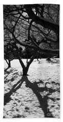 Hand Towel featuring the photograph Winter Shadows by Yulia Kazansky