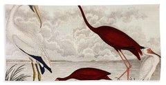 Wood Ibis, Scarlet Flamingo, White Ibis Hand Towel by Alexander Wilson