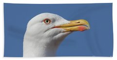 Yellow-legged Gull - Larus Michahellis Hand Towel by Jivko Nakev