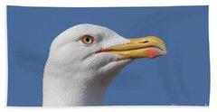 Yellow-legged Gull - Larus Michahellis Bath Towel by Jivko Nakev